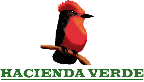 Hacienda Verde - Day Tours Agroforestry